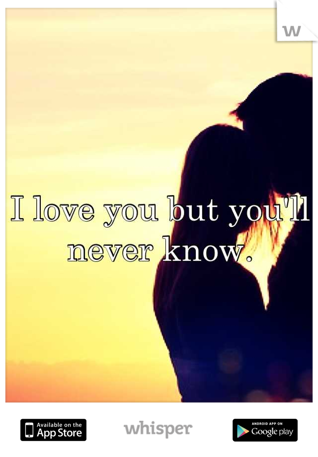 I love you but you'll never know.