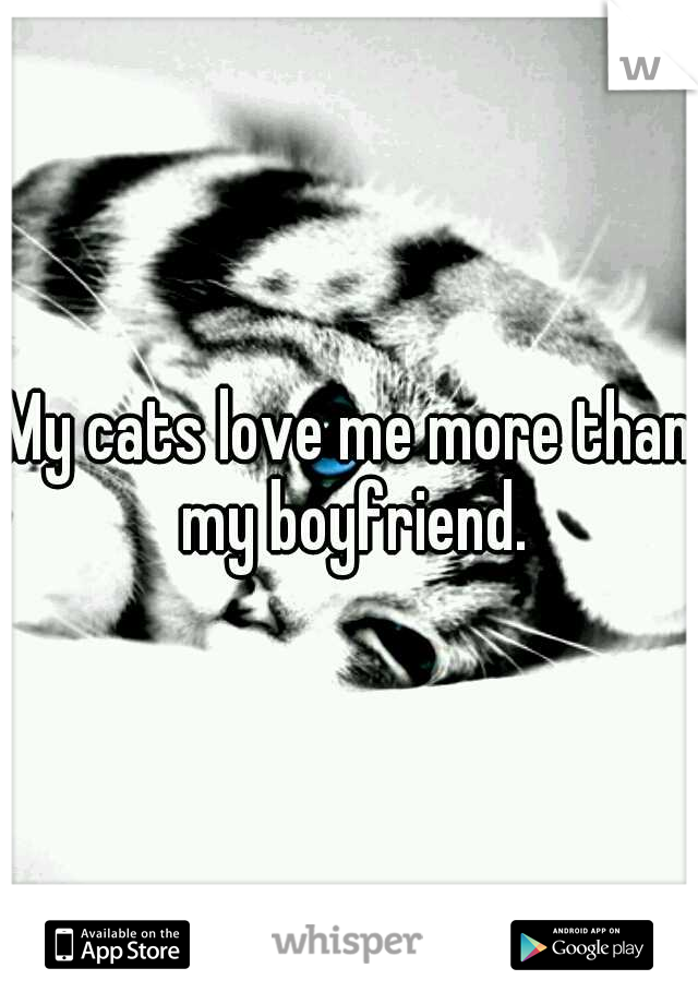My cats love me more than my boyfriend.