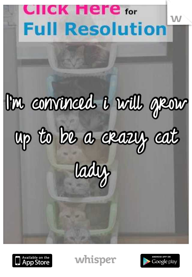 I'm convinced i will grow up to be a crazy cat lady