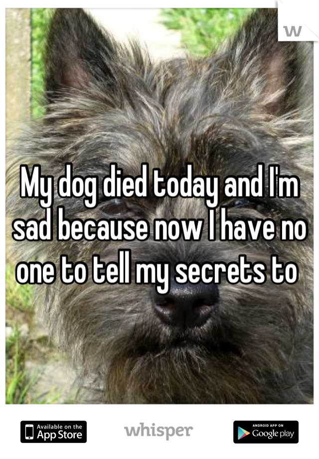 My dog died today and I'm sad because now I have no one to tell my secrets to