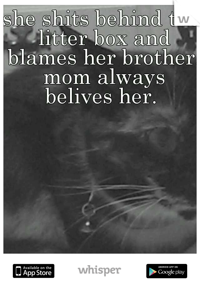 she shits behind the litter box and blames her brother. mom always belives her.