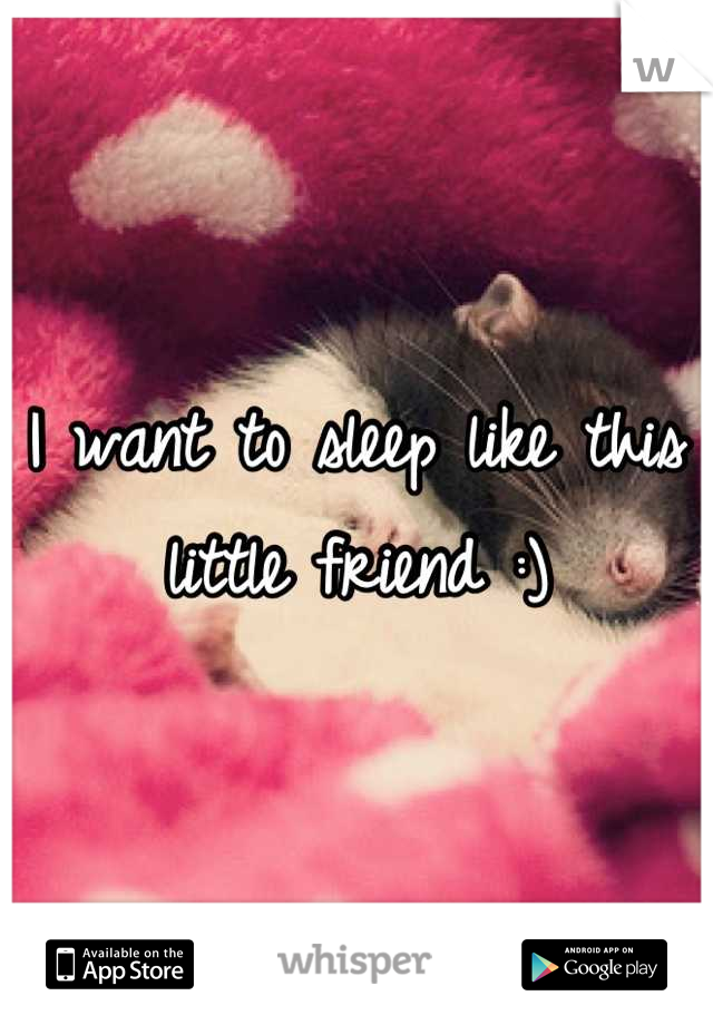 I want to sleep like this little friend :)