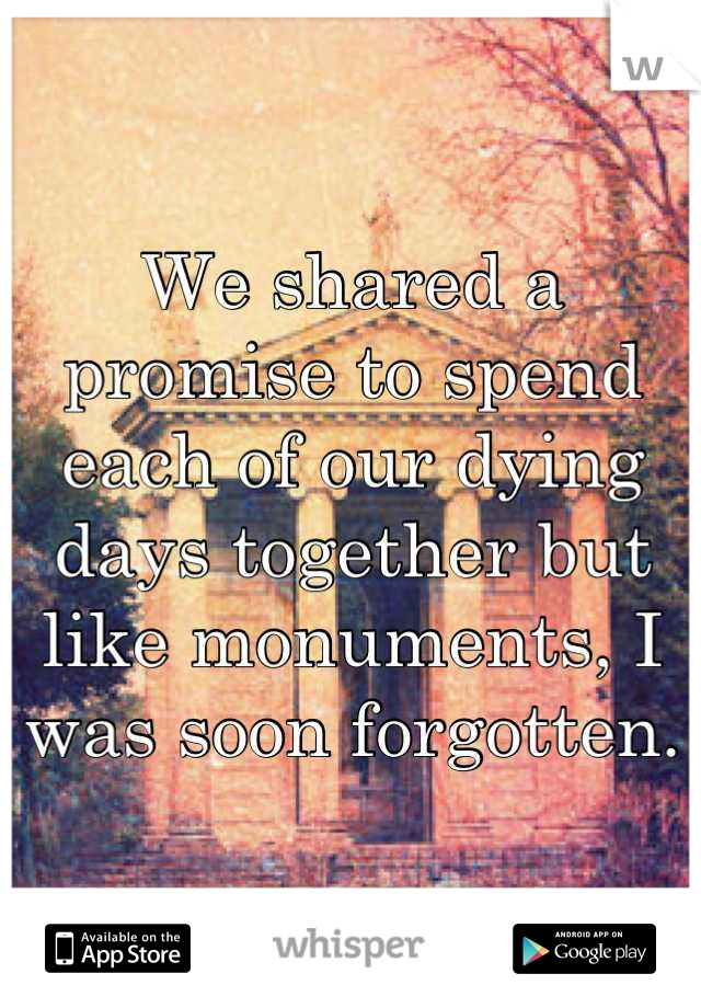 We shared a promise to spend each of our dying days together but like monuments, I was soon forgotten.