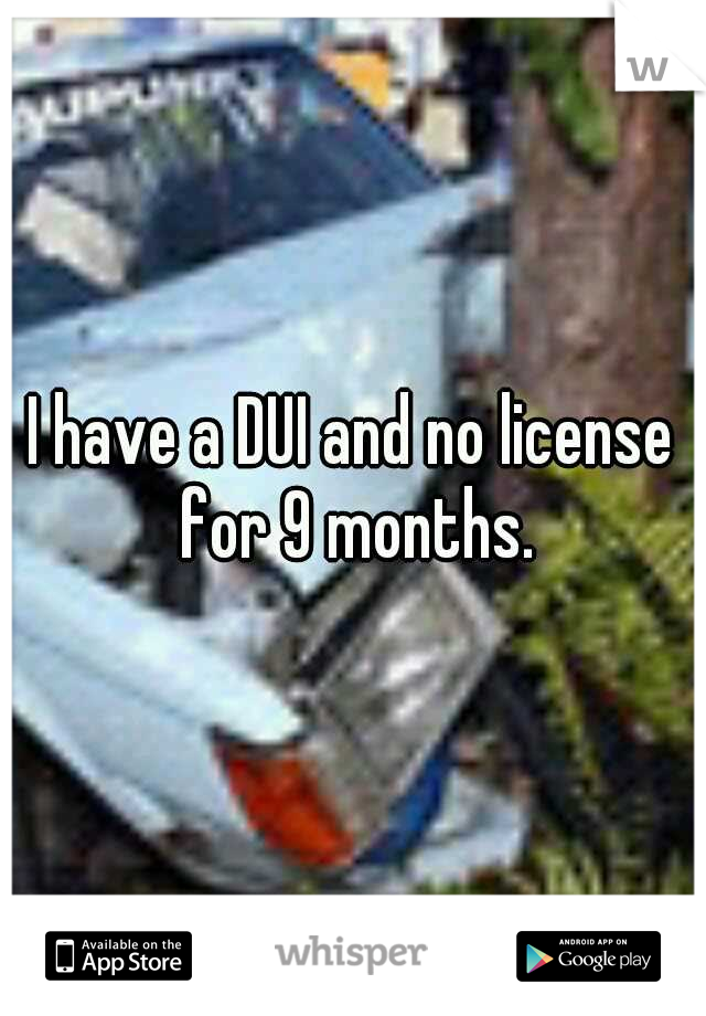 I have a DUI and no license for 9 months.