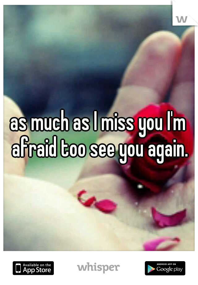 as much as I miss you I'm afraid too see you again.