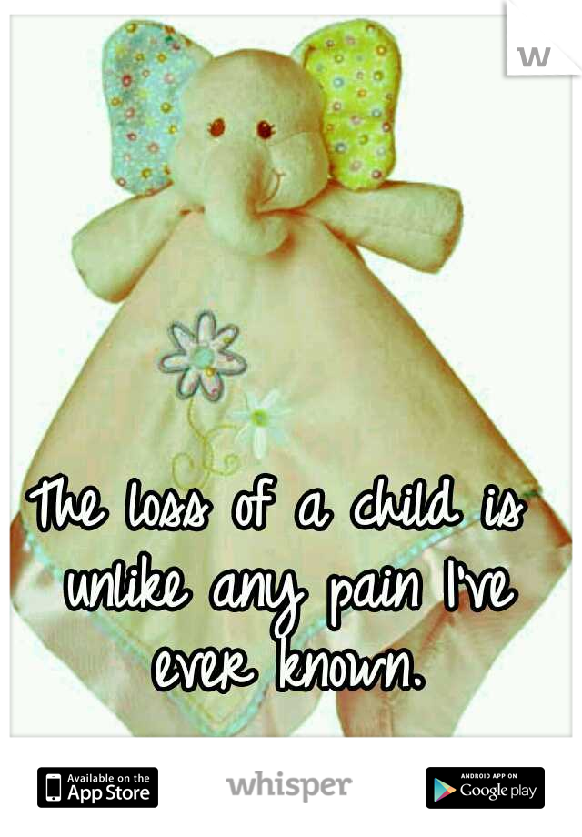 The loss of a child is unlike any pain I've ever known.