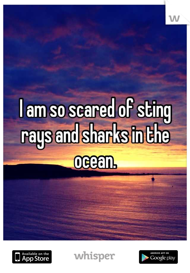 I am so scared of sting rays and sharks in the ocean.