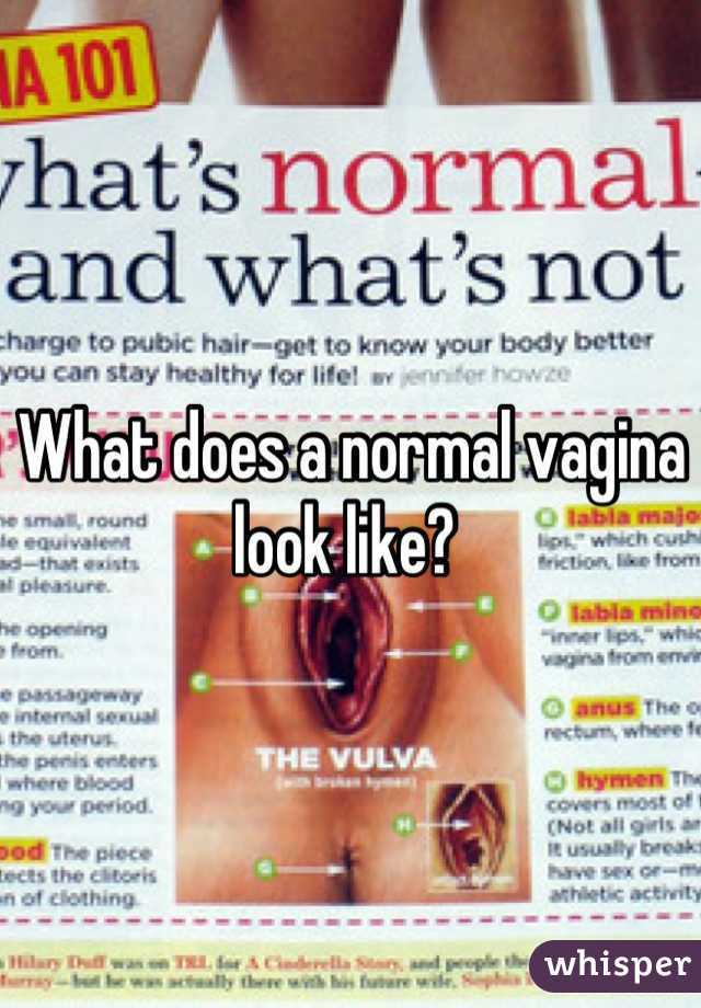 THAT'S A normal healthy vagina