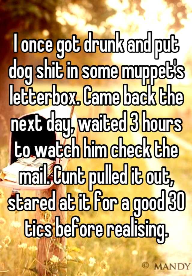 I Once Got Drunk And Put Dog Shit In Some Muppet's