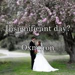 Insignificant day?  Oxmoron