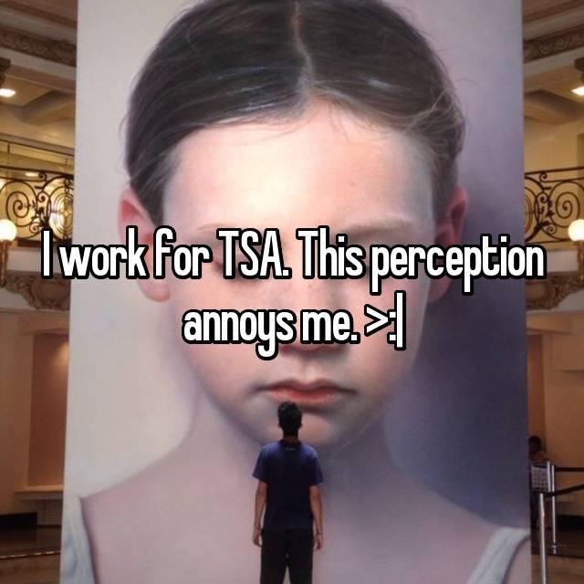 I work for TSA. This perception annoys me. >:|