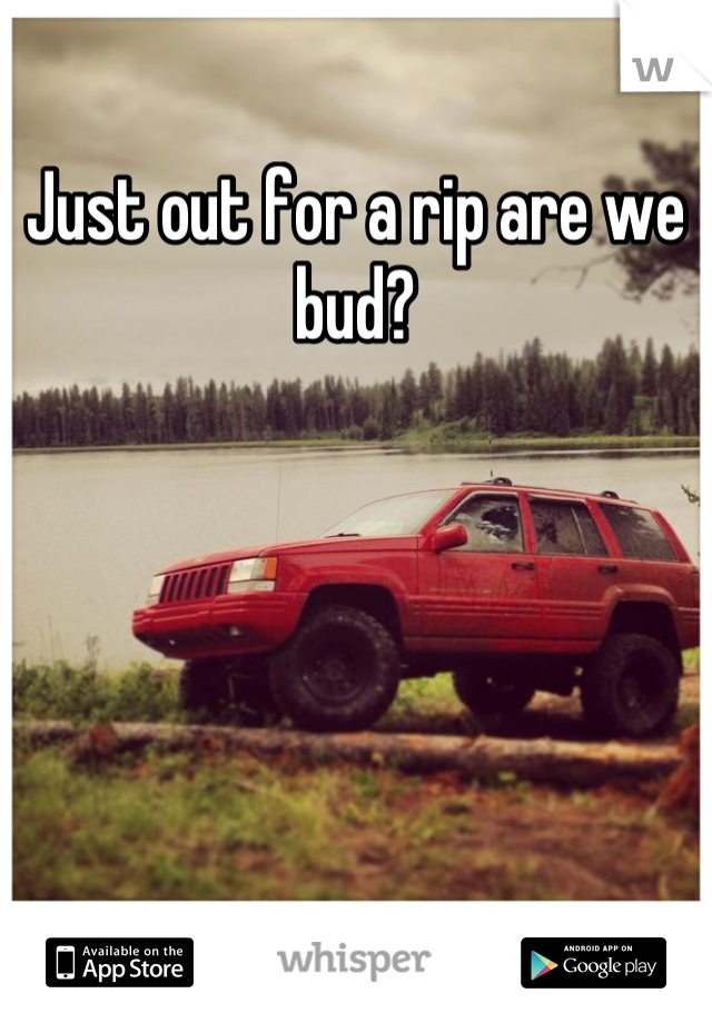 Just out for a rip are we bud?