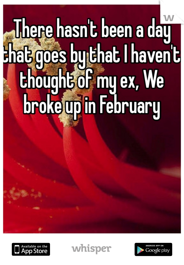 There hasn't been a day that goes by that I haven't thought of my ex, We broke up in February
