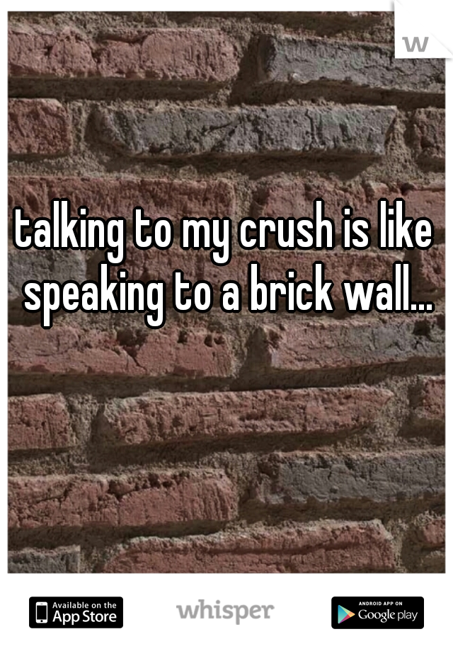 talking to my crush is like speaking to a brick wall...