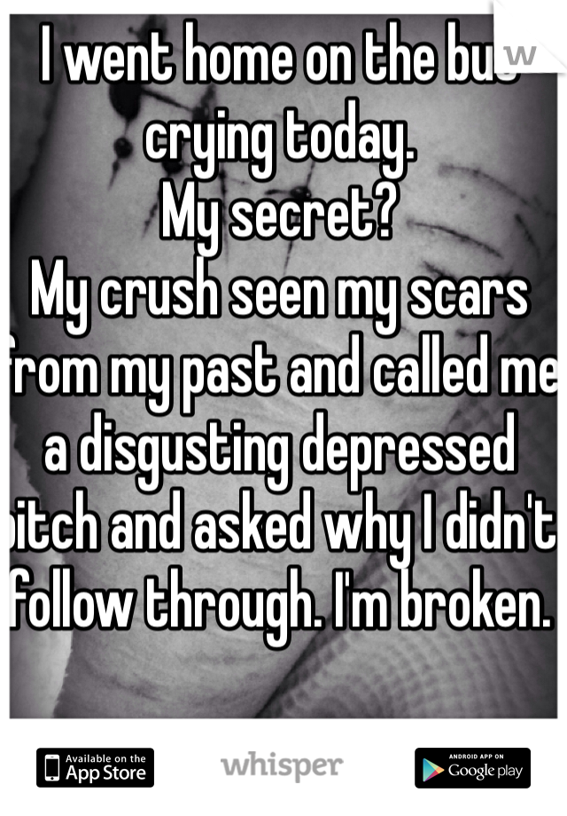 I went home on the bus crying today.  My secret? My crush seen my scars from my past and called me a disgusting depressed bitch and asked why I didn't follow through. I'm broken.