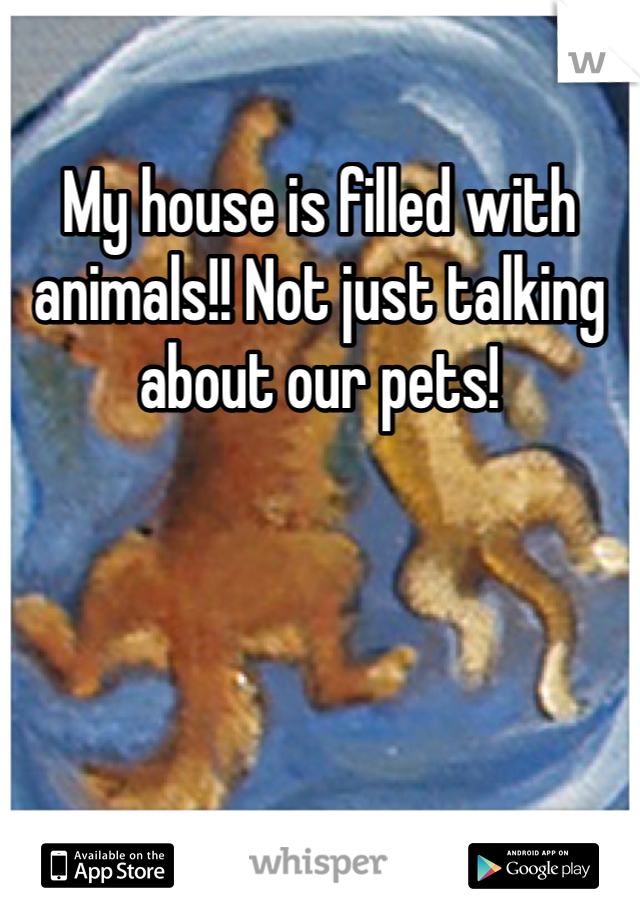 My house is filled with animals!! Not just talking about our pets!