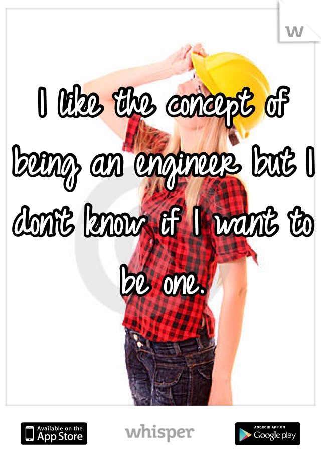 I like the concept of  being an engineer but I don't know if I want to be one.