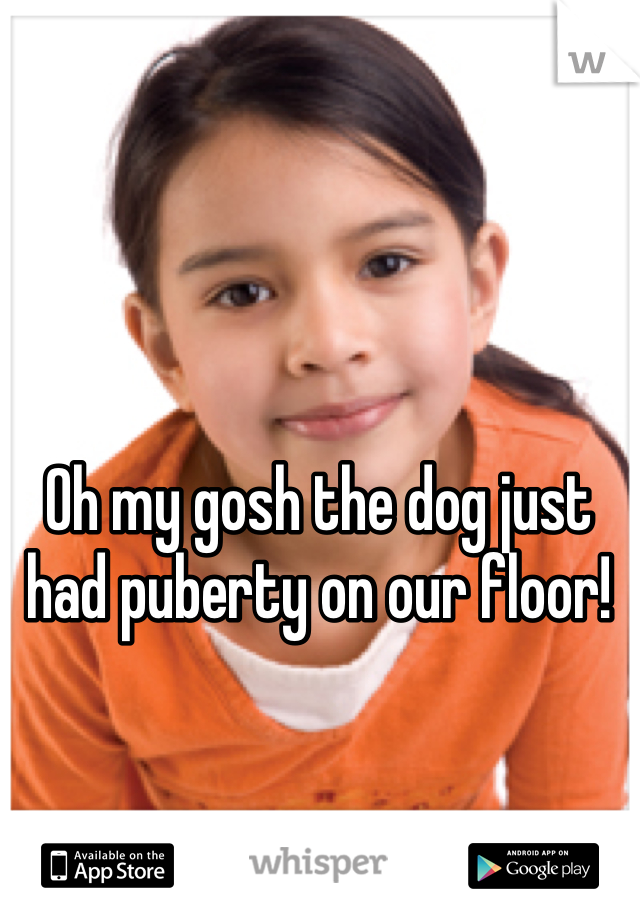 Oh my gosh the dog just had puberty on our floor!
