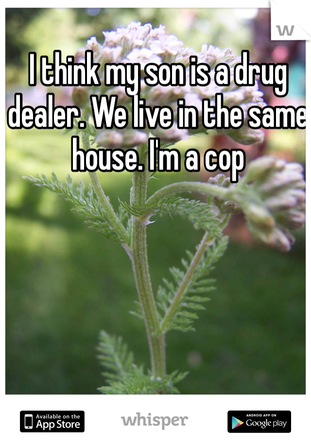 I think my son is a drug dealer. We live in the same house. I'm a cop
