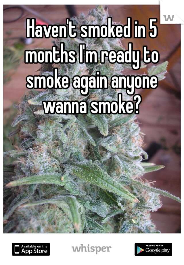Haven't smoked in 5 months I'm ready to smoke again anyone wanna smoke?
