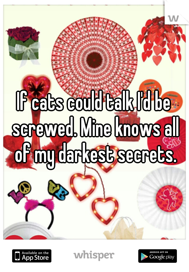 If cats could talk I'd be screwed. Mine knows all of my darkest secrets.