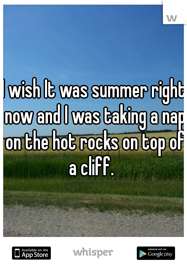 I wish It was summer right now and I was taking a nap on the hot rocks on top of a cliff.