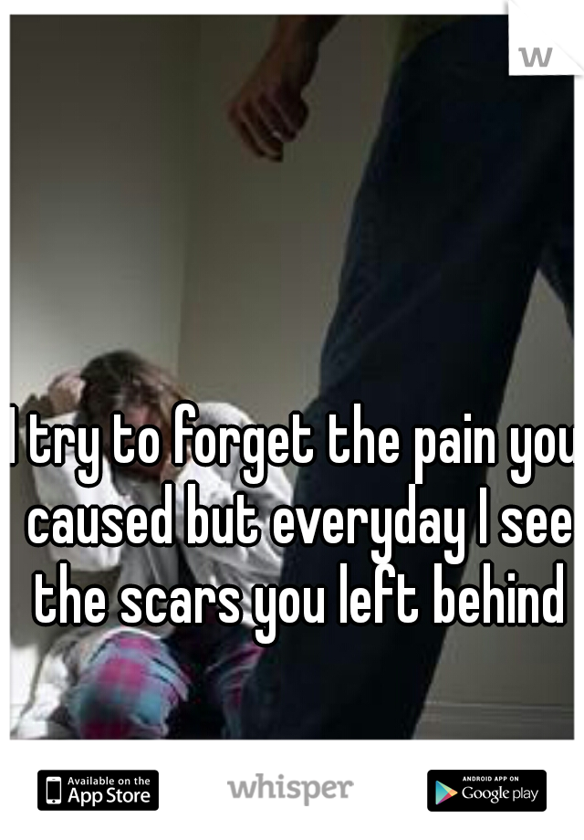 I try to forget the pain you caused but everyday I see the scars you left behind