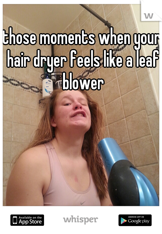 those moments when your hair dryer feels like a leaf blower