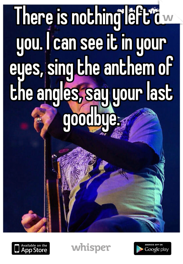 There is nothing left of you. I can see it in your eyes, sing the anthem of the angles, say your last goodbye.