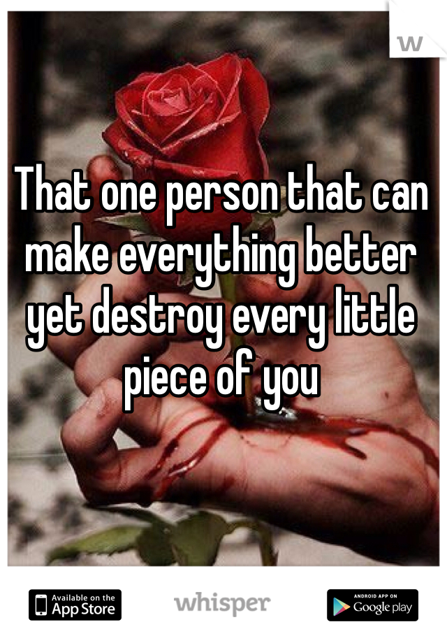 That one person that can make everything better yet destroy every little piece of you