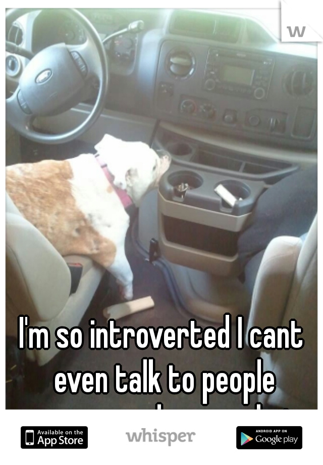 I'm so introverted I cant even talk to people anonymously over chat.