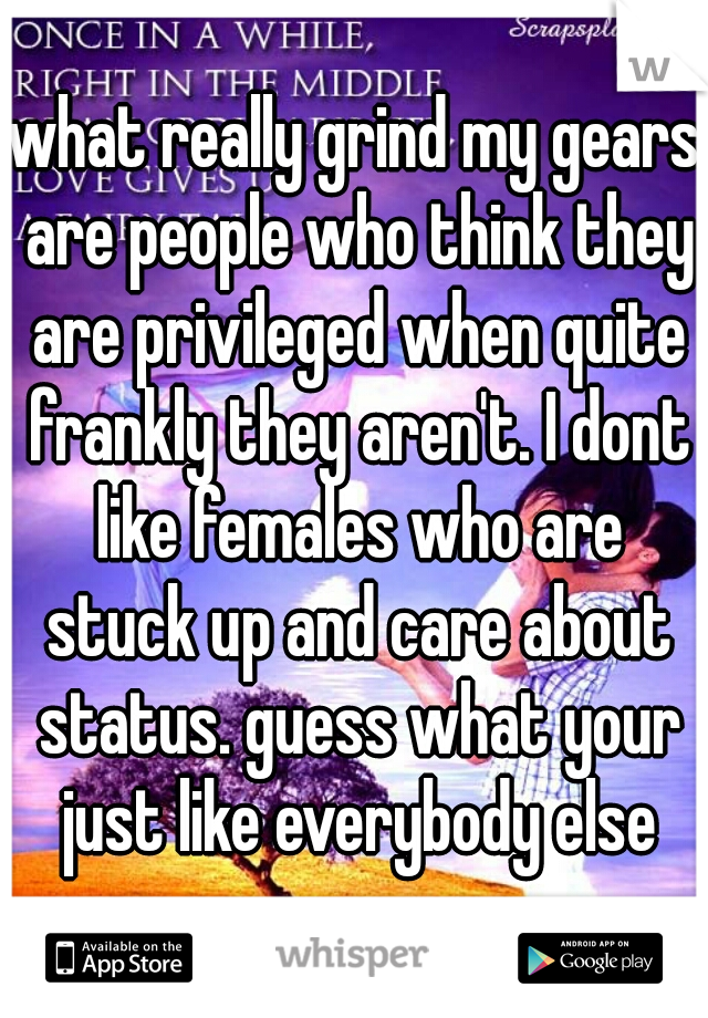 what really grind my gears are people who think they are privileged when quite frankly they aren't. I dont like females who are stuck up and care about status. guess what your just like everybody else