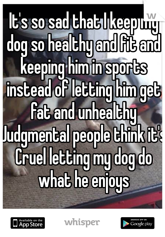 It's so sad that I keep my dog so healthy and fit and keeping him in sports instead of letting him get fat and unhealthy  Judgmental people think it's Cruel letting my dog do what he enjoys