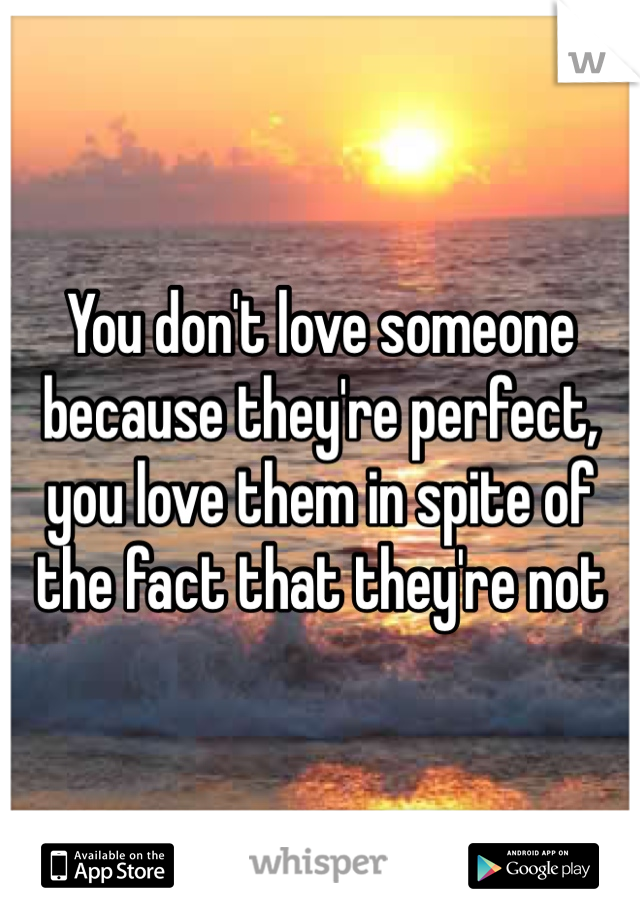 You don't love someone because they're perfect, you love them in spite of the fact that they're not