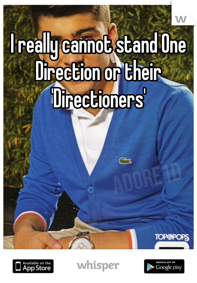 I really cannot stand One Direction or their 'Directioners'