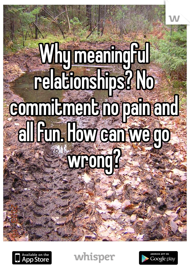 Why meaningful relationships? No commitment no pain and all fun. How can we go wrong?