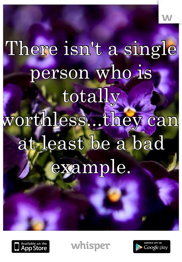 There isn't a single person who is totally worthless...they can at least be a bad example.