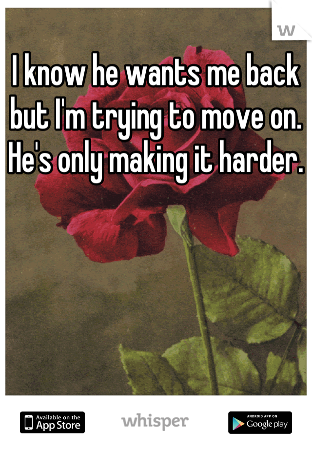 I know he wants me back but I'm trying to move on. He's only making it harder.