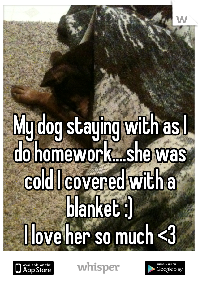 My dog staying with as I do homework....she was cold I covered with a blanket :) I love her so much <3