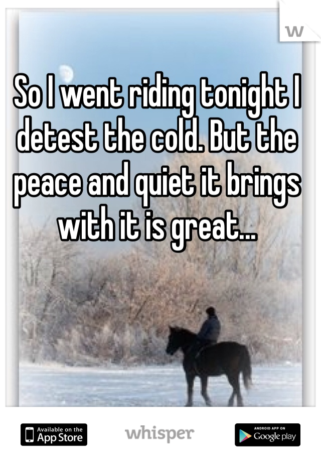So I went riding tonight I detest the cold. But the peace and quiet it brings with it is great...