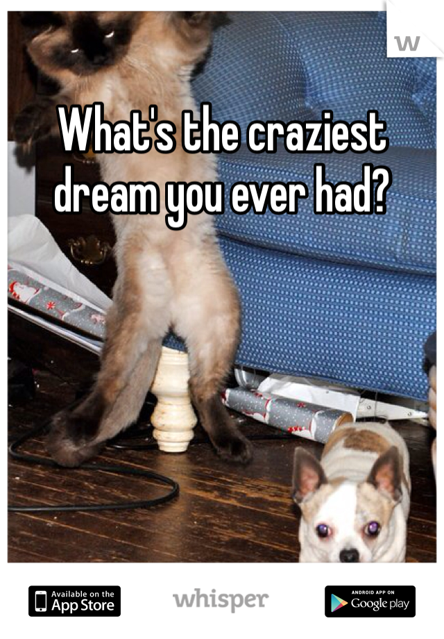 What's the craziest dream you ever had?