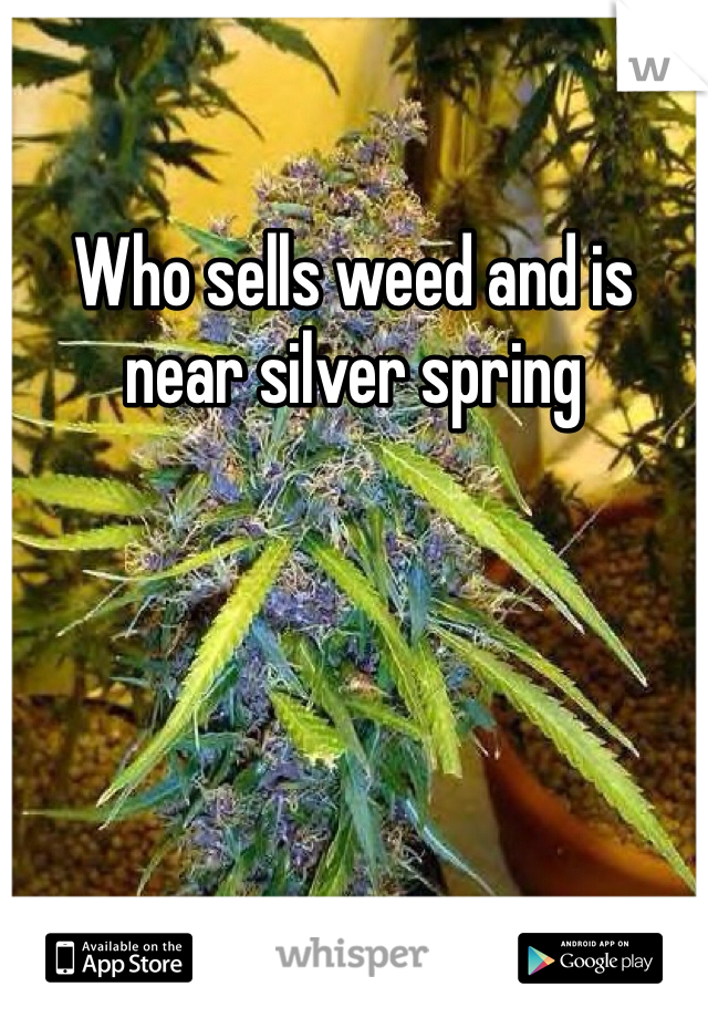 Who sells weed and is near silver spring
