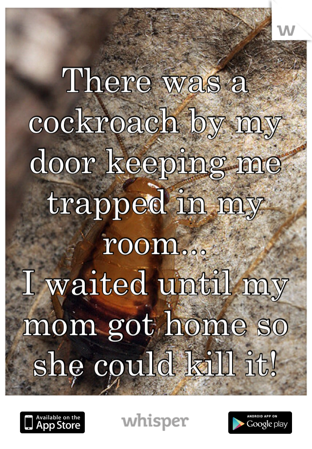 There was a cockroach by my door keeping me trapped in my room...  I waited until my mom got home so she could kill it!