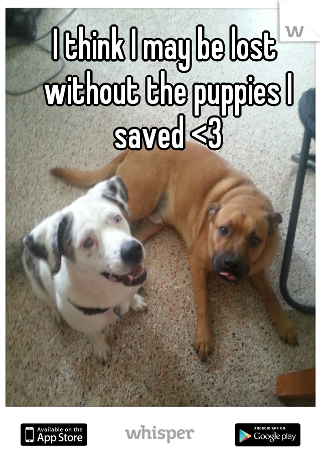 I think I may be lost without the puppies I saved <3