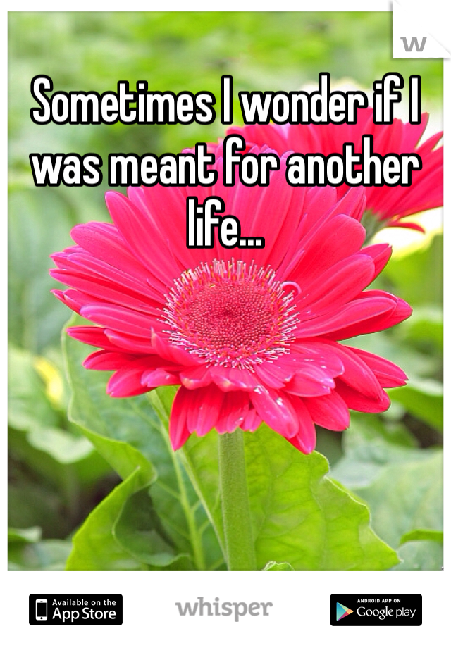 Sometimes I wonder if I was meant for another life...