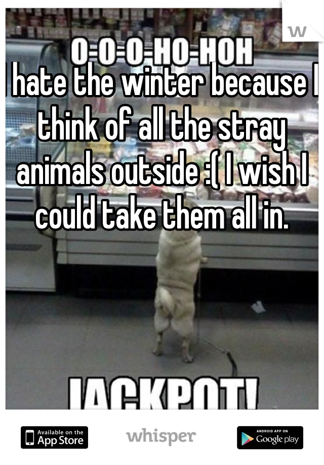 I hate the winter because I think of all the stray animals outside :( I wish I could take them all in.