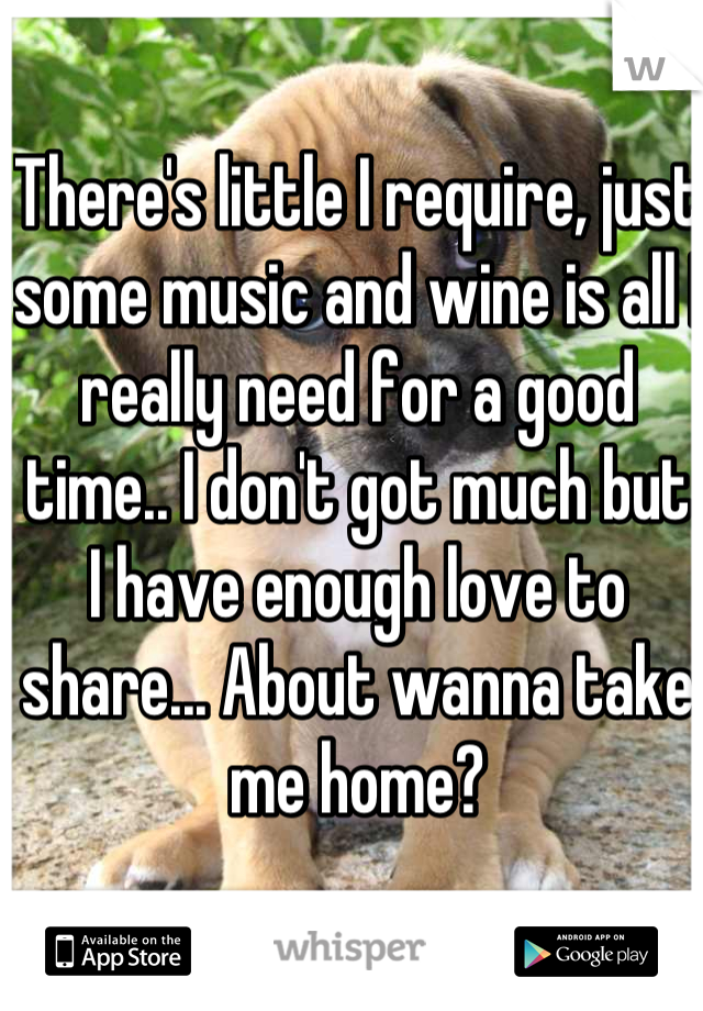 There's little I require, just some music and wine is all I really need for a good time.. I don't got much but I have enough love to share... About wanna take me home?