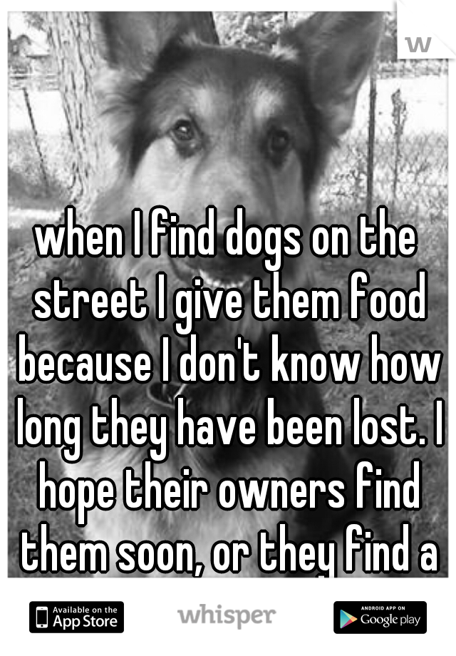 when I find dogs on the street I give them food because I don't know how long they have been lost. I hope their owners find them soon, or they find a good new home.