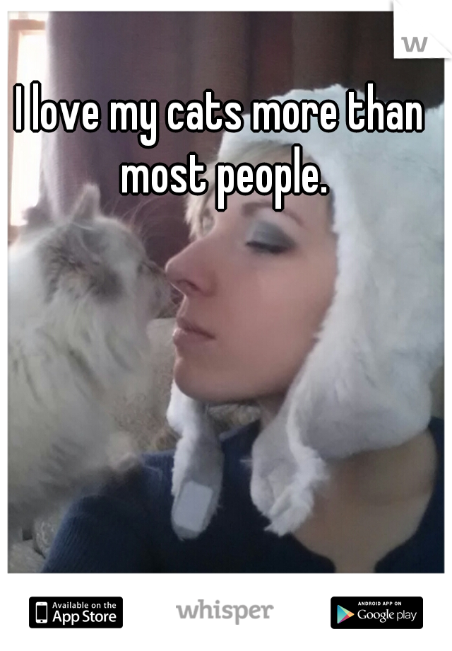 I love my cats more than most people.