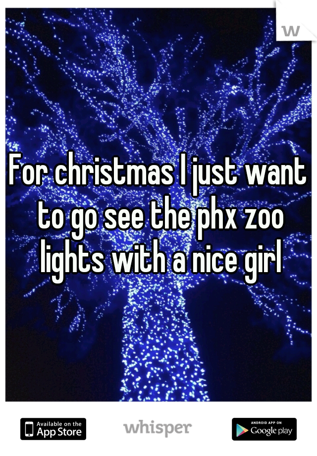 For christmas I just want to go see the phx zoo lights with a nice girl